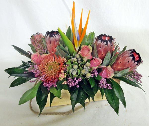 indigenous protea box